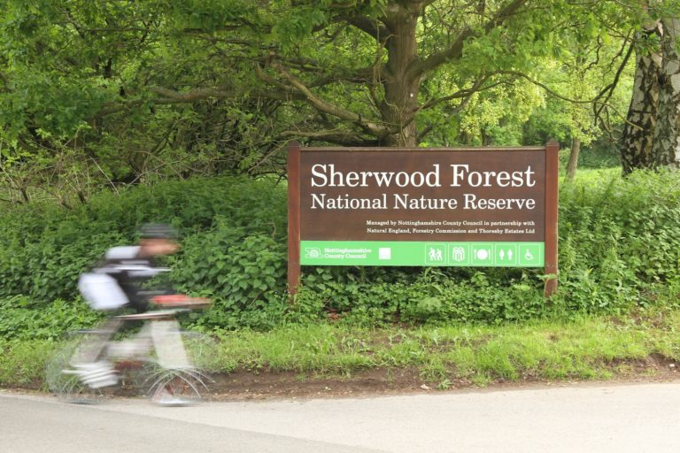 A Road Cycling Tour of the Best Places to Visit in Sherwood Forest