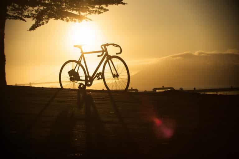 8 Best Fixed Gear Bikes Under $500 | Cheap Fixie Reviews