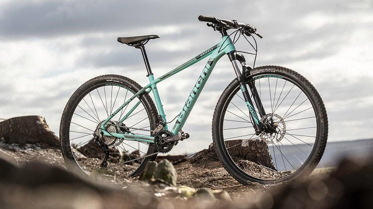 Bianchi Grizzly