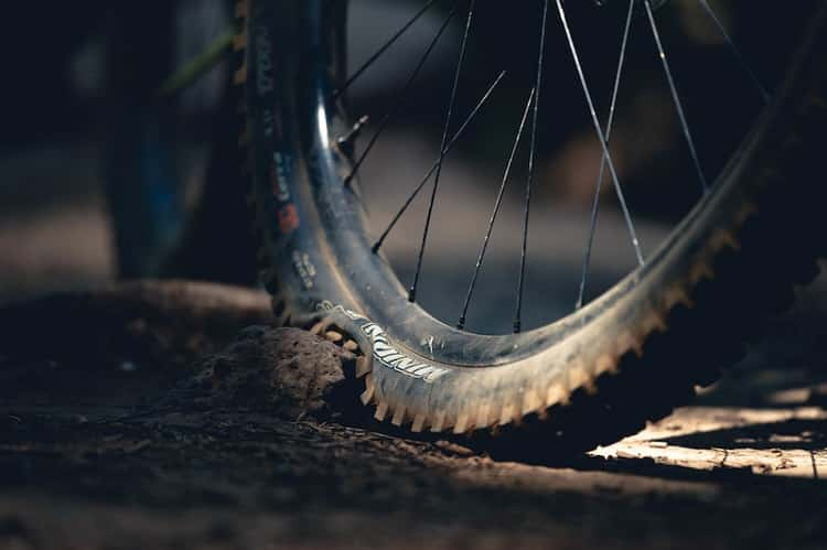 bike tire and stone