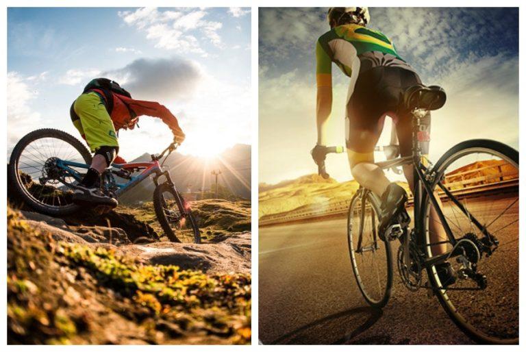 Road Bike Vs. Mountain Bike
