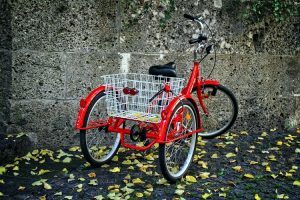 What's the Best Budget-Friendly Tricycle for Adults?