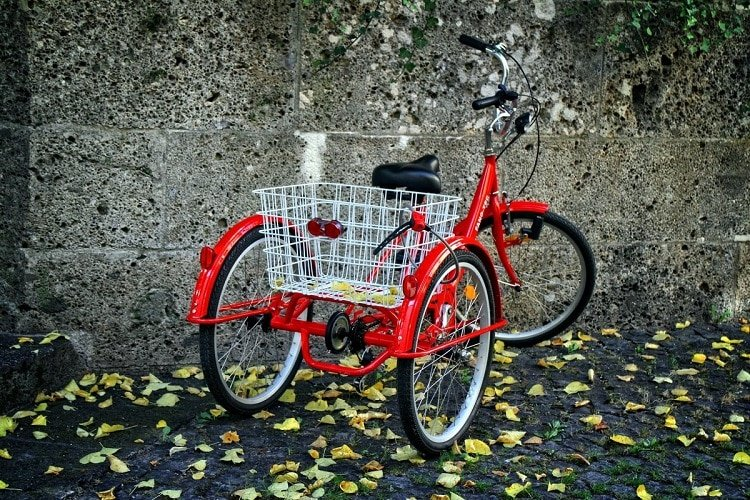 3 Best Tricycles for Adults 2021 | Reviews of Budget Friendly Options