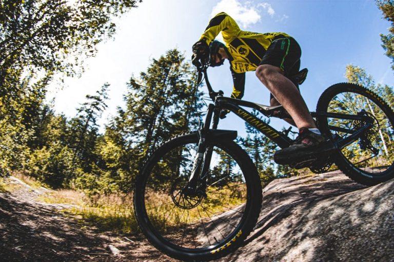 8 Best Mountain Bikes Under $300 For Men 2021 (Reviews)