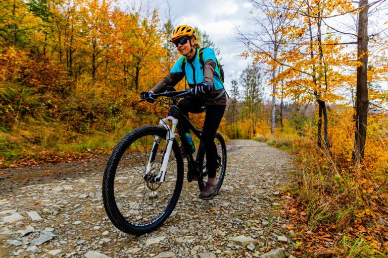 Are Schwinn or Huffy Bikes Better?