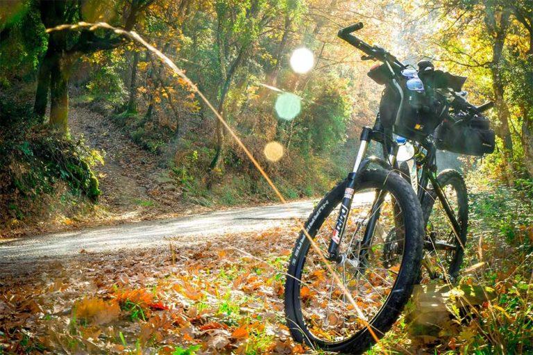 How Do You Clean a Carbon Fiber Bike?